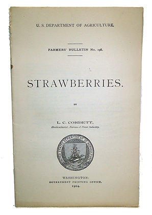 Strawberries Dept. of Agriculture 1904
