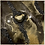 Thumbnail: Soteria - Protection