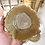Thumbnail: Golden Palm Agate Coasters.