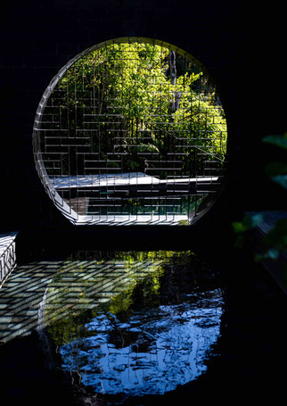 Pond reflection low res.jpg