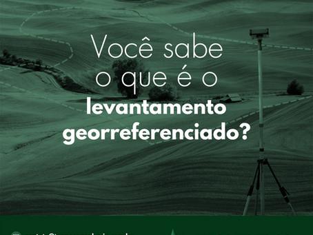 Você sabe o que é o levantamento georreferenciado?