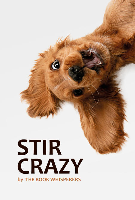 Stir Crazy: A lockdown anthology