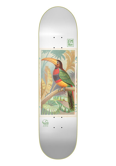 Emillion - Avis Toucan Bird - 8.25