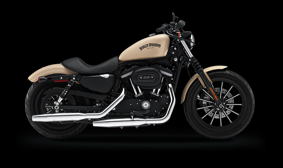 Halrey Davidson 883 Iron with matt paint