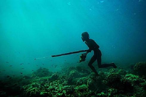 'ความลึก' ที่ยังเป็น 'ความลับ' ของ Freediving