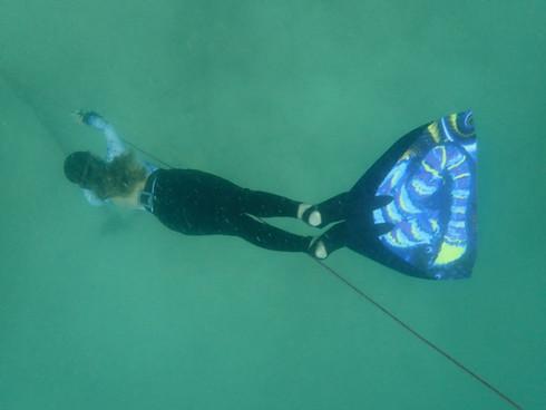 จะเรียน Freedive ต้องลึก ต้องอึด..แค่ไหนเหรอคะ?