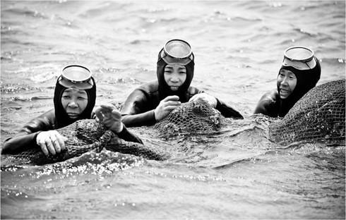 """""""เงือกสาวแห่งเชจู"""" เรื่องของ Free Diving ที่หลายคนไม่รู้"""