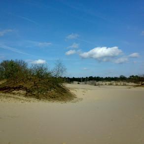Duurzaam vakantie vieren in Noord-Brabant