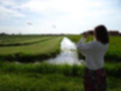 Vakantie-Nederland-vogelaar-hihahut-verr