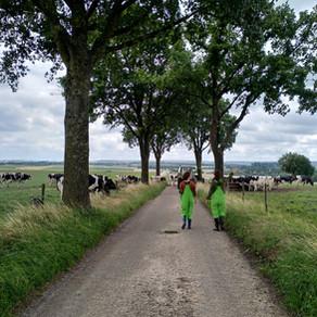 Verblijf op een vakantieboerderij in Limburg