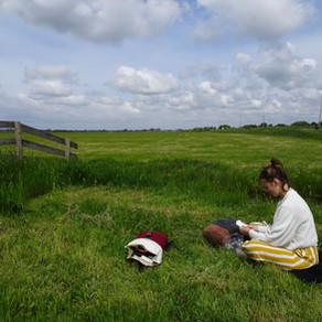 Op vakantie in de Nederlandse polder met Hihahut