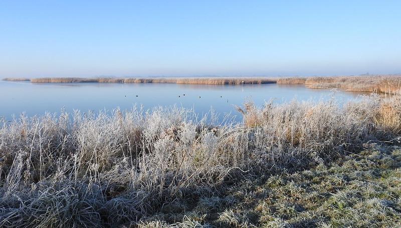 Het Lauwersmeer is een stukje wildernis in Friesland