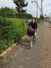 みねやま自転車店 代表 三根山交司