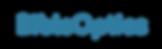 Bible Optics Logo.png