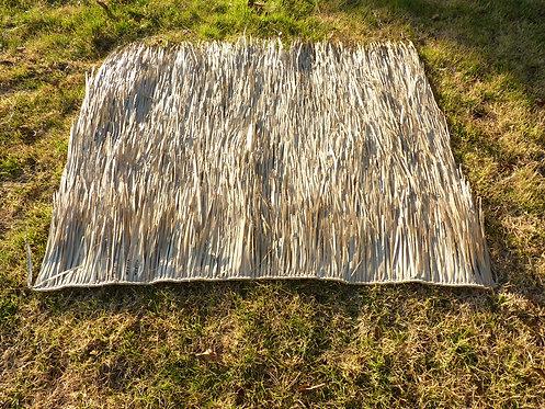 3 Ft. Mallard Grass