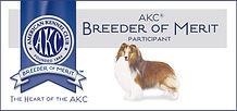 ShetlandSheepdog_BoM_Banner.jpg