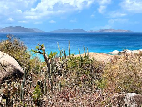Quiet Anchorages in the British Virgin Islands