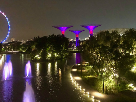 19 Singapore Photos to Inspire You to Plan a Trip in 2021