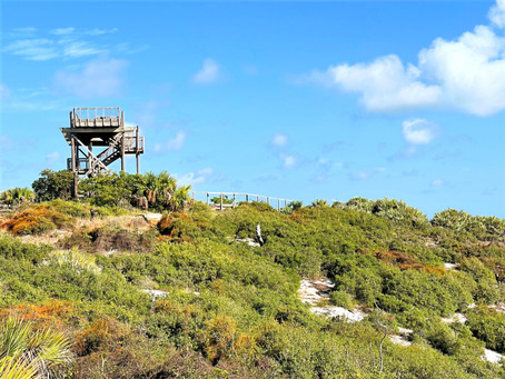Things to Know Before Visiting Jonathan Dickinson State Park, Florida