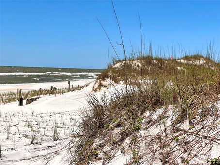 Things to Know when Visiting, St. Joseph Peninsula State Park