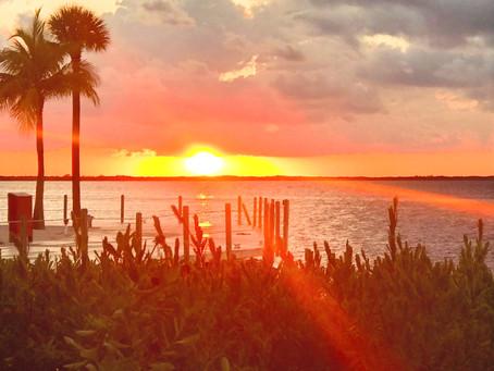 Exploring the Natural Beauty of the Florida Keys