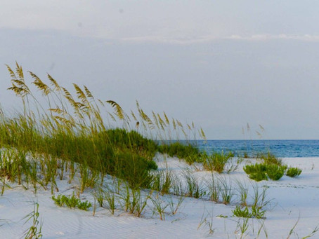 Navarre Beach: A Gem on the Gulf Coast