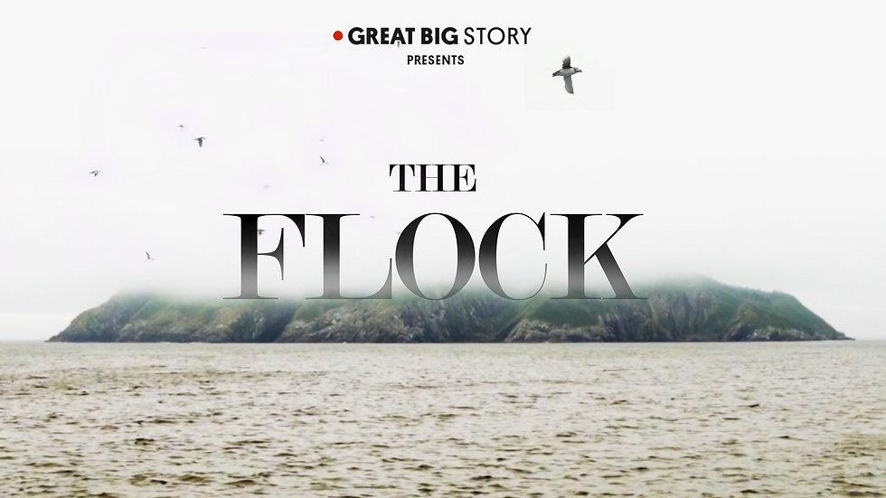 the flock poster.jpeg