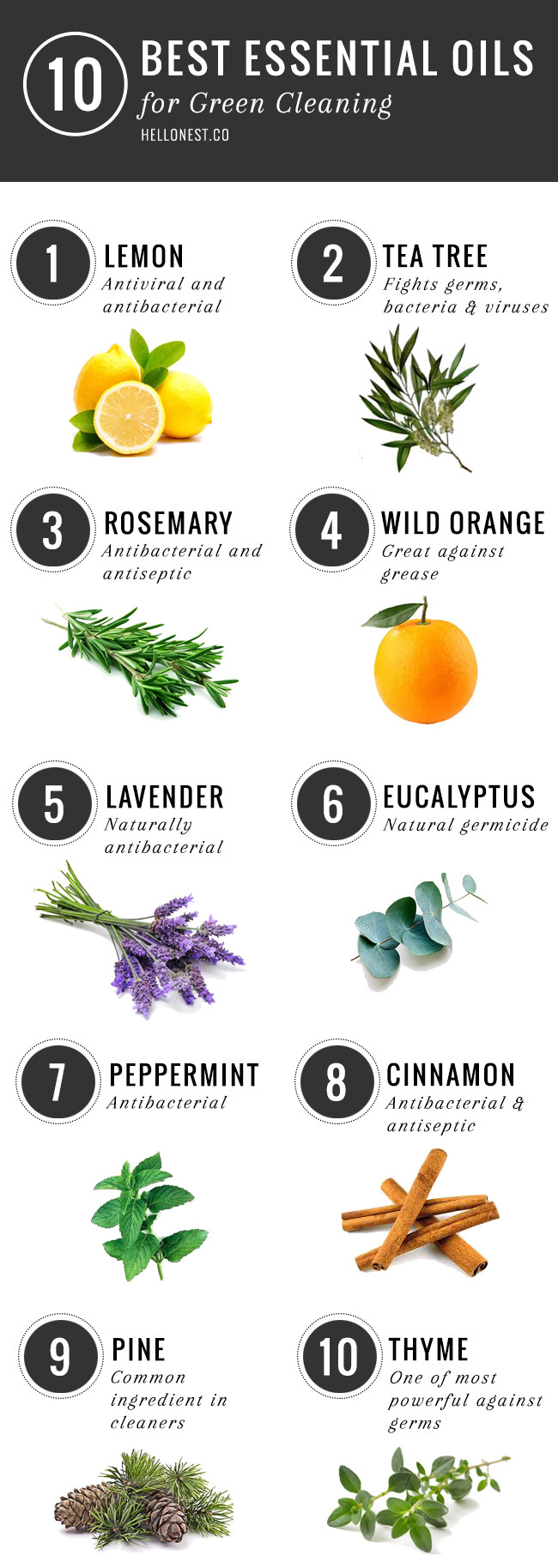 10 Best Essential Oils for Green Cleaning via Hellonest.co