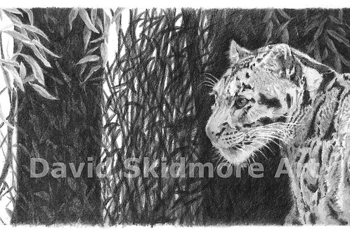 Shadowy Past, Uncertain Future, Giclee Print.