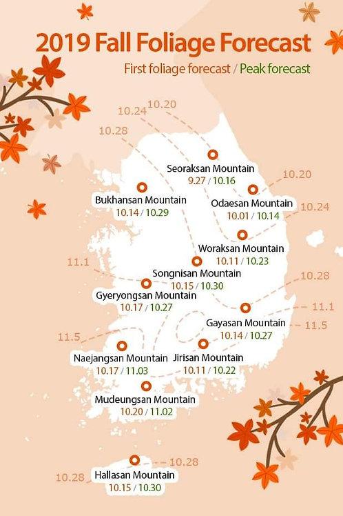2019 Fall Foliage Forecast