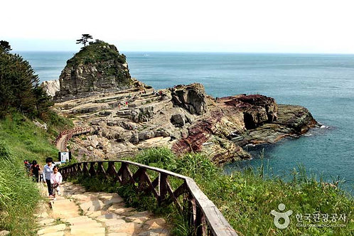 The Hidden Seaside Paradise of Geoje from Busan: Windy Hill and Oedo Island