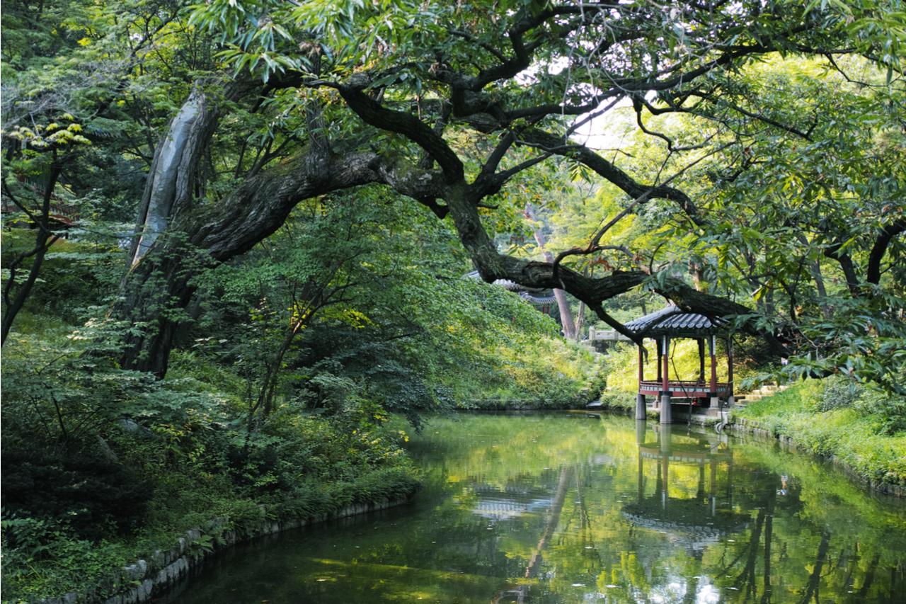 Changdeok Palace Secrete Garden