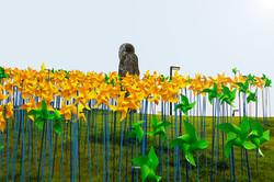 Imjingak Pyeonghoa-Nuri Park