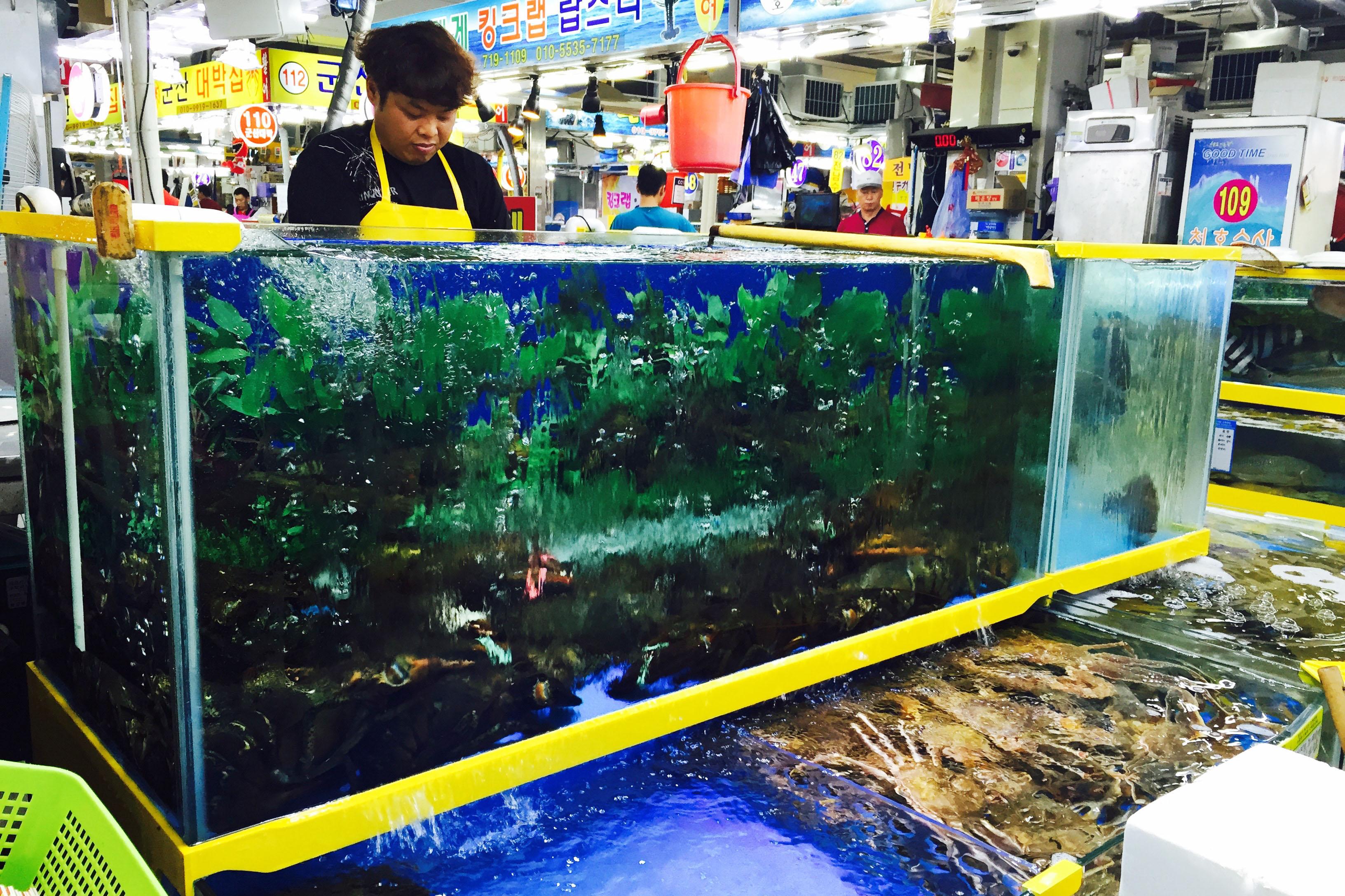 Sorae Fish Market Seafood