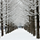 Thumbnail: Winter 8 days Ski+Jeju+Busan+Mt. Seorak+Seoul on the end Nov to Jan