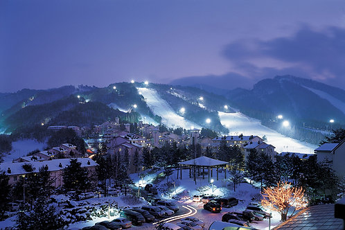 Daily Ski tour -Yongpyong/Alpensia Ski Resort from Seoul