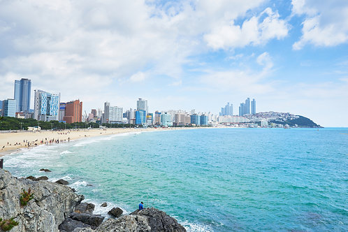 Busan Flexible Private Tour with Local guide