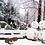 Thumbnail: Winter 10 days Ski+Jeju+Mt.Seorak+DMZ+Seoul on the end Nov to Jan