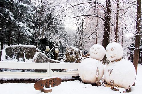 Winter 10 days Ski+Jeju+Mt.Seorak+DMZ+Seoul on the end Nov to Jan