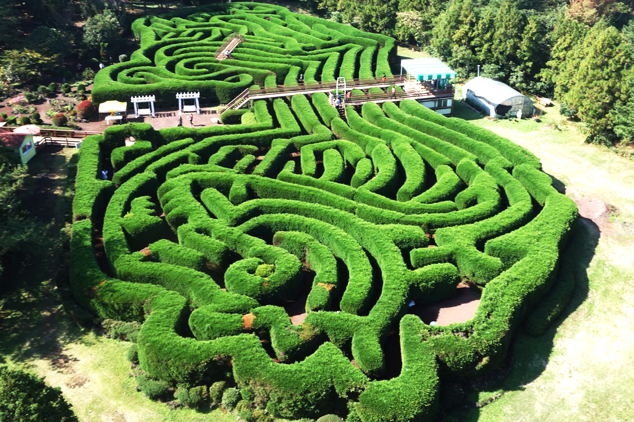 Maze Park Jeju Gimnyeong