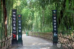 Taehwagang Grand park.jpg