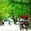 Thumbnail: Private 4 days Nami Island+Petite France+Seoul+Everland tour
