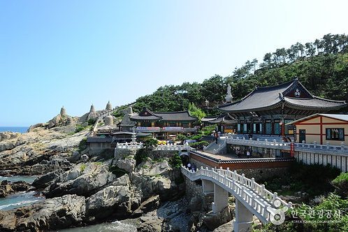 Busan Highlight Day Tour