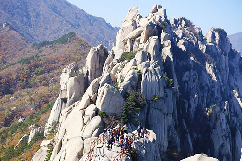 Private 5 days 4 nights Mt. Seorak+Nami Island+Everland+Seoul Tour