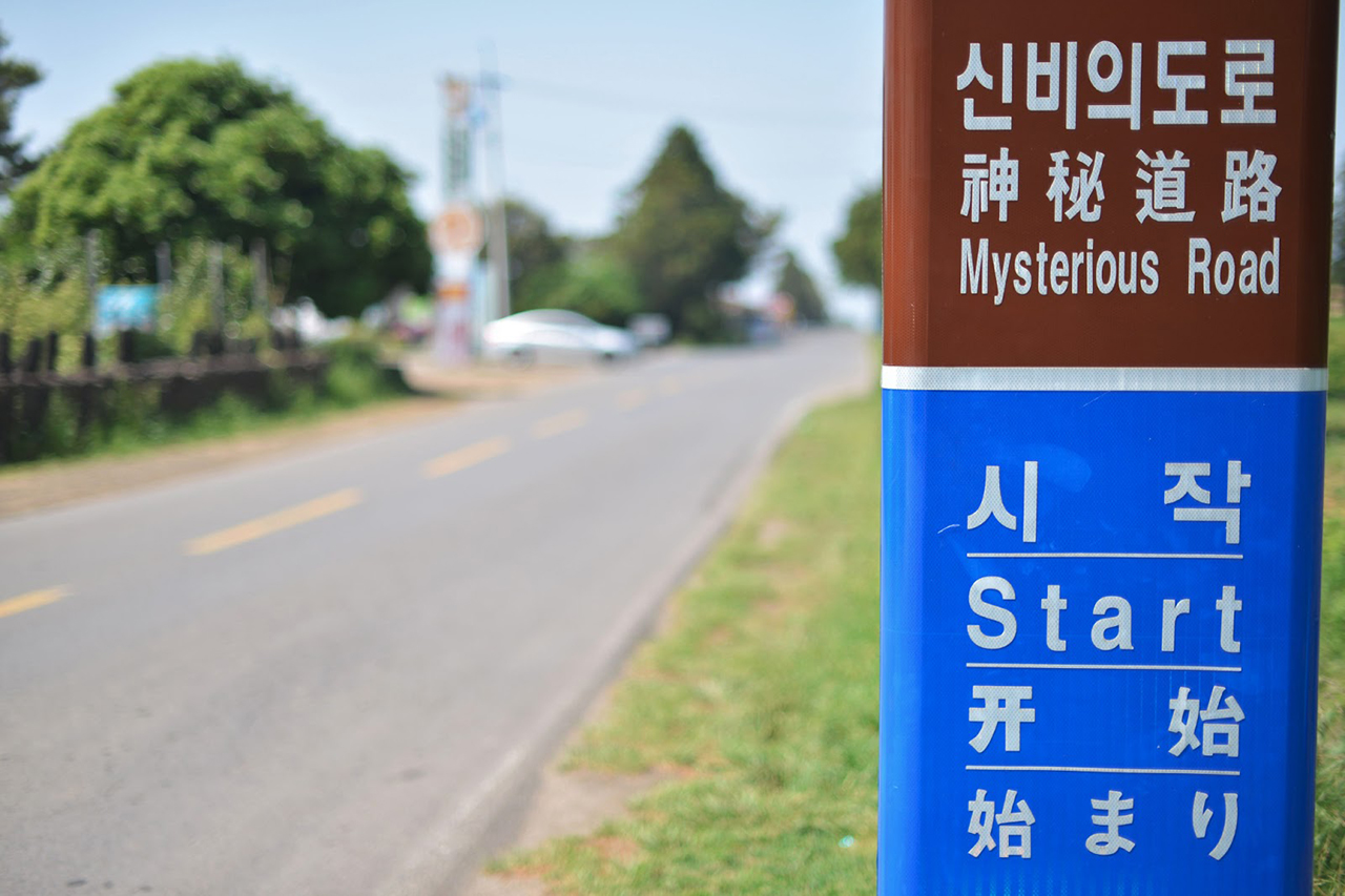mysterious road (Jeju)