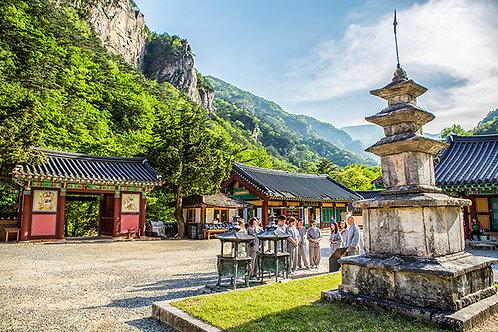 10days leports Jeongseon+ Andong+Temple stay Gyeongju+Busan+Icheon+Seoul