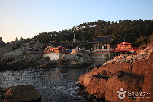 Busan fully Customized Private Tour with local guide