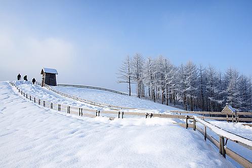 Winter 4 days Ski+Mt Seorak+Seoul on the end Nov to Jan