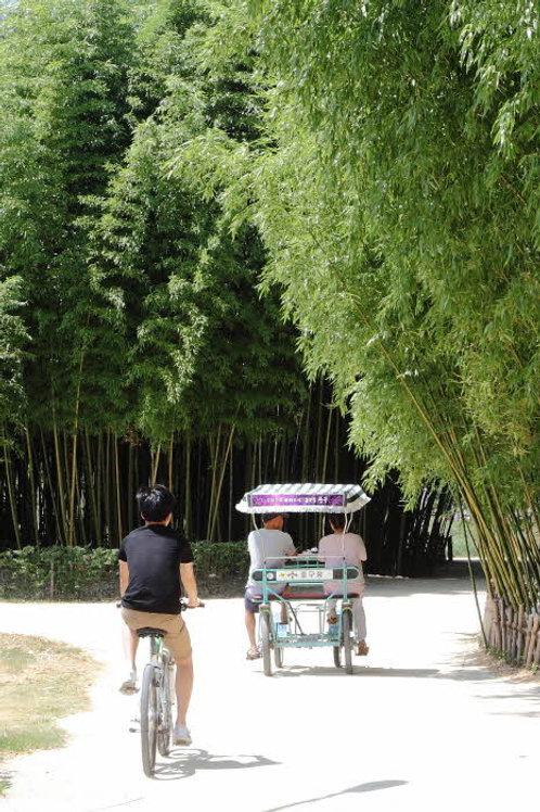 Explore Nature in Ulsan with Local Bulgogi BBQ and Rice wine Tasting