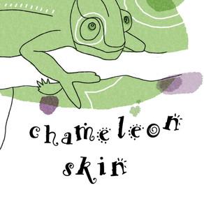 Book Feature: Breanne Weber 'Chameleon Skin'